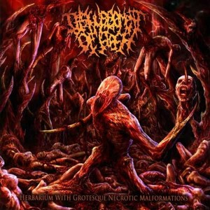 DISFIGUREMENT OF FLESH Herbarium With Grotesque Necrotic Malformations CD