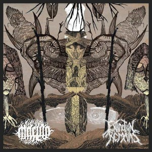 MACULA / EXTINCTION REMAINS Split CD